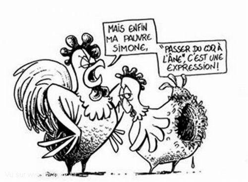 Histoire rotique - coq franais dans mon cul italien 1