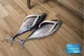 blague-animaux-chausson-poisson