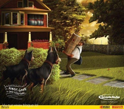 blague-animaux-chien-livreur