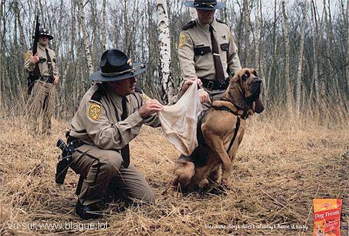 blague-animaux-chien-policier