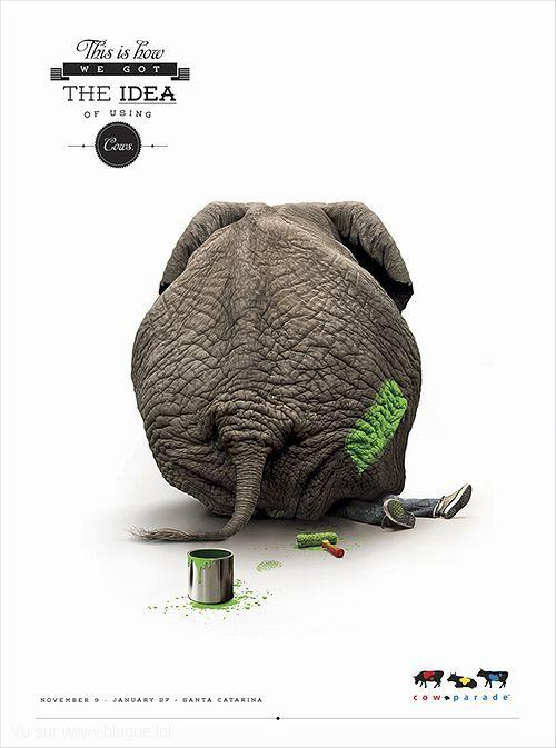 blague-animaux-elephant-peinture
