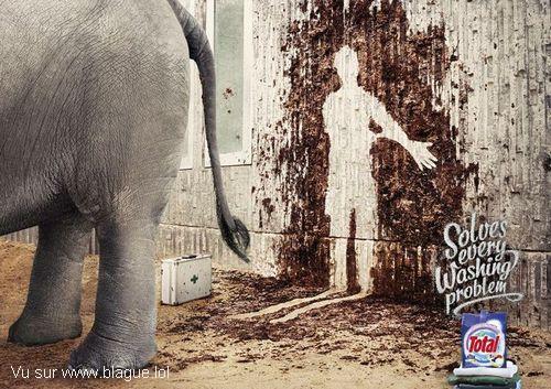 blague-animaux-elephant-soigneur