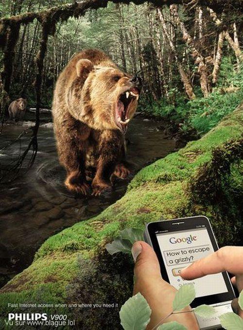 blague-animaux-google-comment-echapper-a-un-ours
