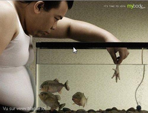 blague-animaux-piranha-homme-gros
