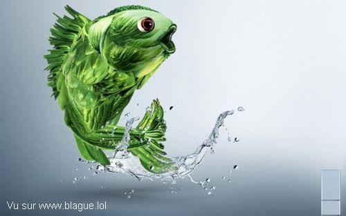 blague-animaux-poisson-legume