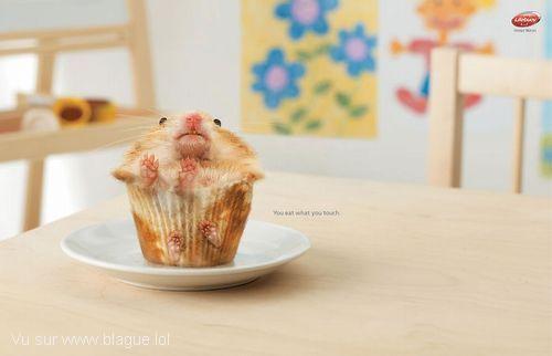 blague-animaux-souris-gateau