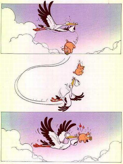 blague-dessin-cigogne-cochon