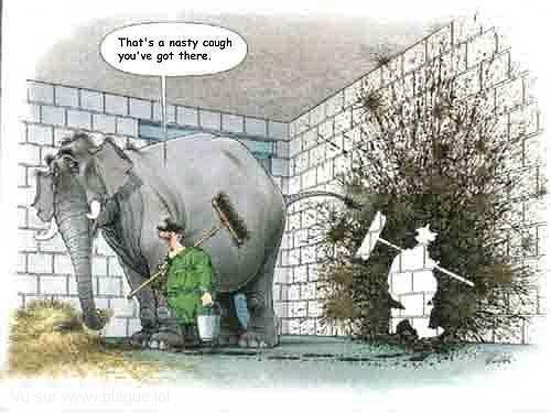 blague-dessin-elephant-soigneur