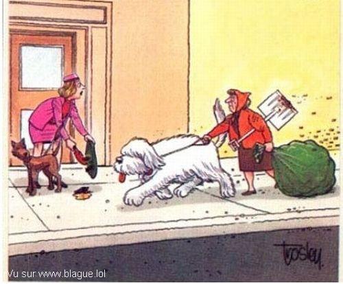 blague-dessin-ramassage-des-crottes-gros-chien