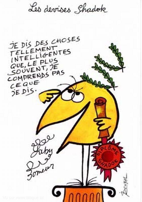 blague-dessin-shadock
