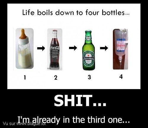 blague-divers-le-cycle-de-la-vie-alcool