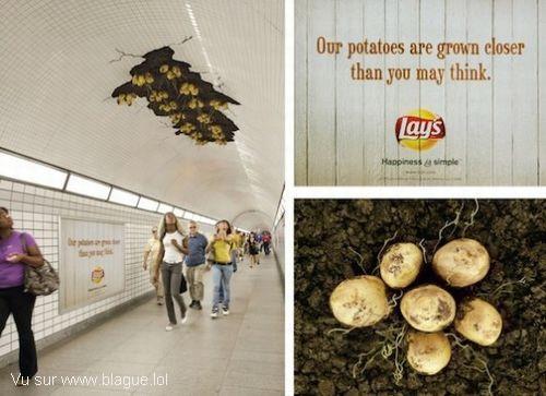 blague-divers-pomme-de-terre-plafond-du-metro