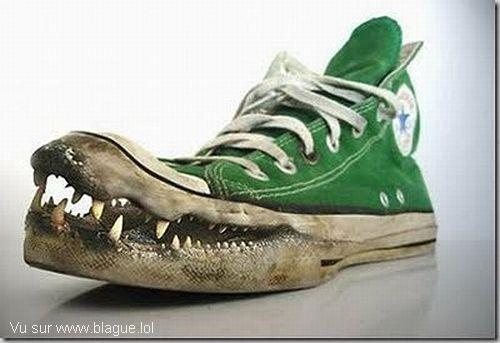 blague-marque-chaussure-crocodile