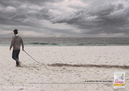 blague-marque-chien-trop-gros-plage