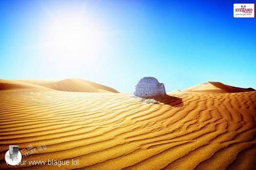 blague-marque-igloo-dans-le-desert