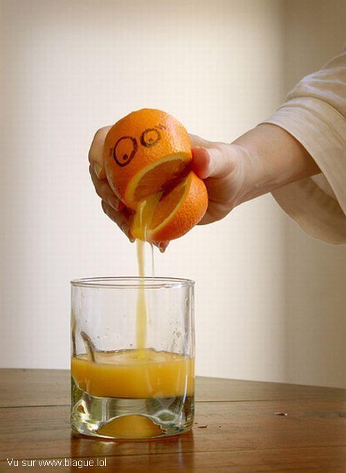 blague-nourriture-orange-presse