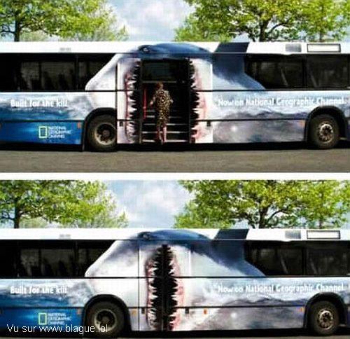 blague-transport-bus-requin-avale-passager
